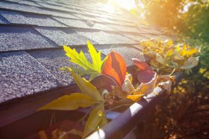 Fall House Maintenance Tips